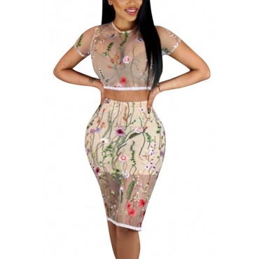 Sexy Round Neck Short Sleeves See-Through Beige Polyester Two-piece Skirt Set