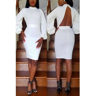 Healthy Fabric Sexy Turtleneck Long Sleeve Sheath Mini Dresses