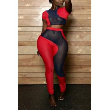 Sexy Round Neck Short Sleeves Gauze Patchwork Red Milk Fiber Two-piece Pants Set