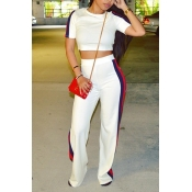 Leisure Round Neck High Waist Patchwork White Polyester Two-piece Pants Set