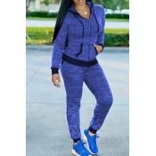 Reizende Beiläufige Mit Kapuze Kragen Reißverschluss Design Blau Stricken Zweiteilige Hosen Gesetzt