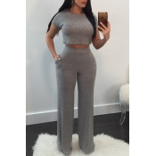Lovely Casual Round Neck Short Sleeves Grey Cotton Two-Piece Pants Set