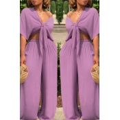 Lovely Casual Deep V Neck Loose Purple Two-piece Pants Set