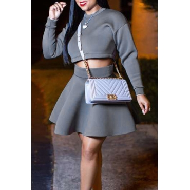Lovely Sweet Long Sleeves Grey Two-piece Skirt Set