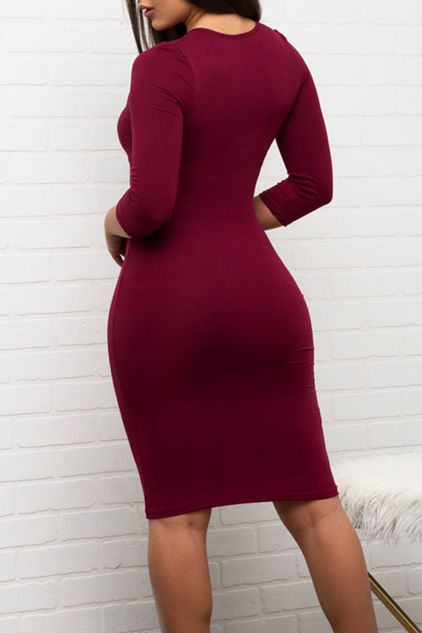 Lovely  Euramerican Slim Wine Red Knee Length Dress