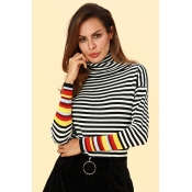 Lovely Casual Striped Black Cotton Sweaters