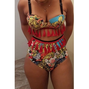 Lovely Trendy Tassel Design Multicolor Two-piece Swimwear