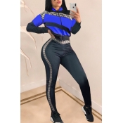 Lovely Casual Patchwork Blue Knitting Two-piece Pants Set