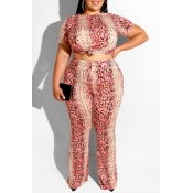 Lovely Casual Snakeskin Pattern Printed Pink Plus