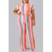 Lovely Casual O Neck Striped Printed Pink Plus Siz