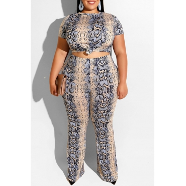 Lovely Casual Snakeskin Pattern Printed Blue Plus Size Two-piece Pants Set