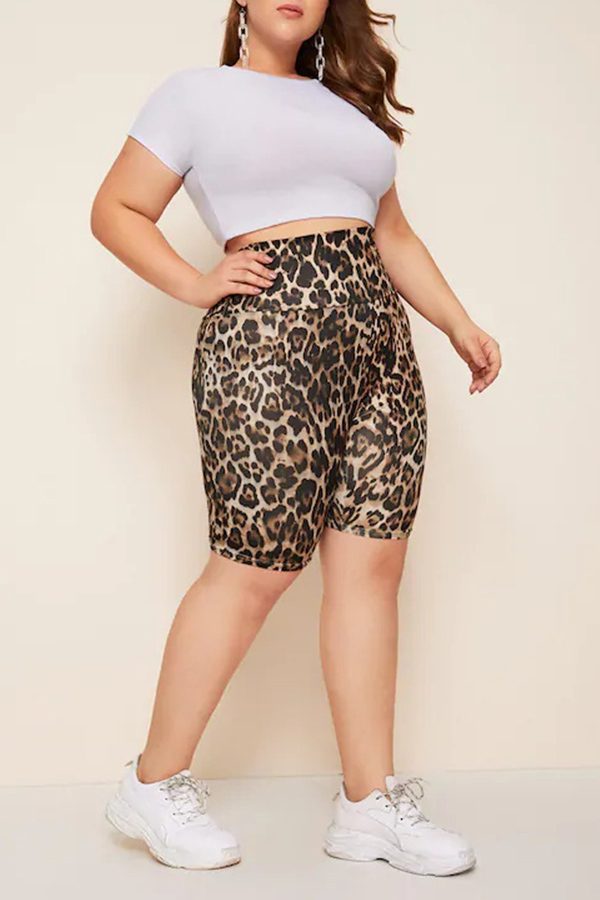 Lovely Casual Leopard Printed Plus Size Shorts