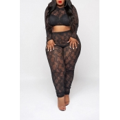 Lovely Sexy See-through Printed Black Plus Size Tw