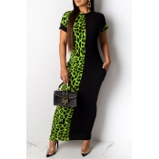 Lovely Casual Leopard Printed Patchwork Green Ankl