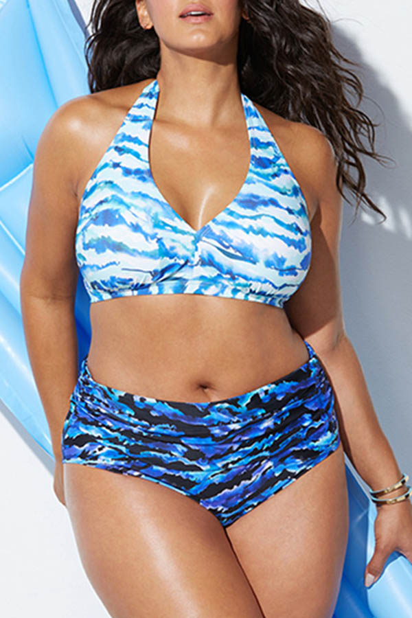 Lovely Printed Blue Plus Size Two-piece Swimwear