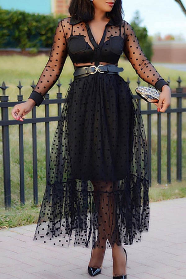 Lovely Sweet See-through Black Ankle Length Dress(Without Belt