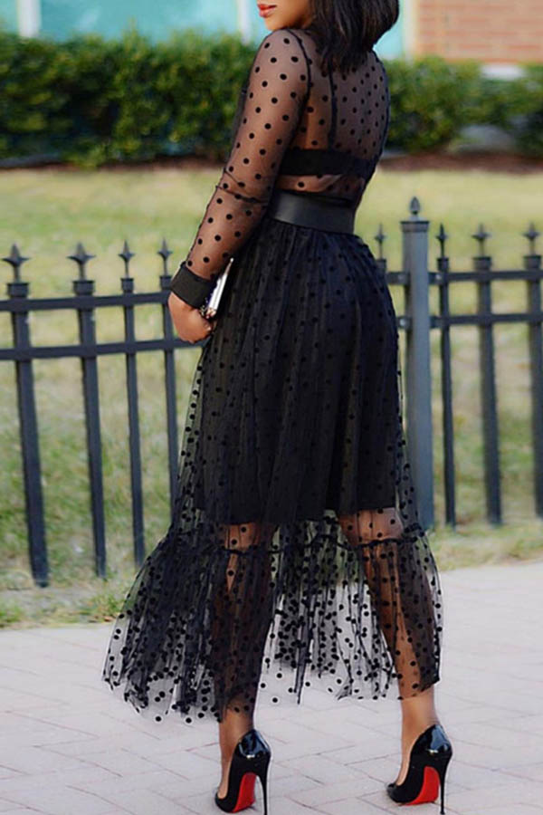 Lovely Sweet See-through Black Ankle Length Dress(Without Belt)