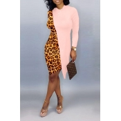 Lovely Casual Asymmetrical Leopard Pink Knee Length Dress
