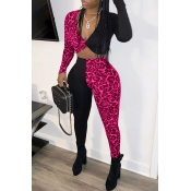 Lovely Sexy Patchwork Rose Red Two-piece Pants Set