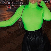 Lovely Casual Turtleneck Skinny Green Sweater