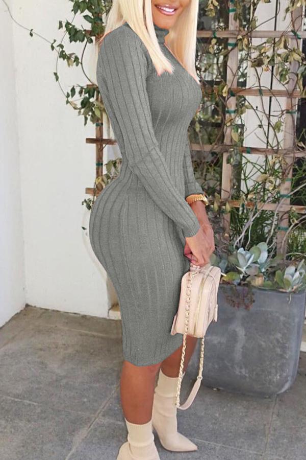 Lovely Leisure Turtleneck Skinny Grey Knee Length Dress