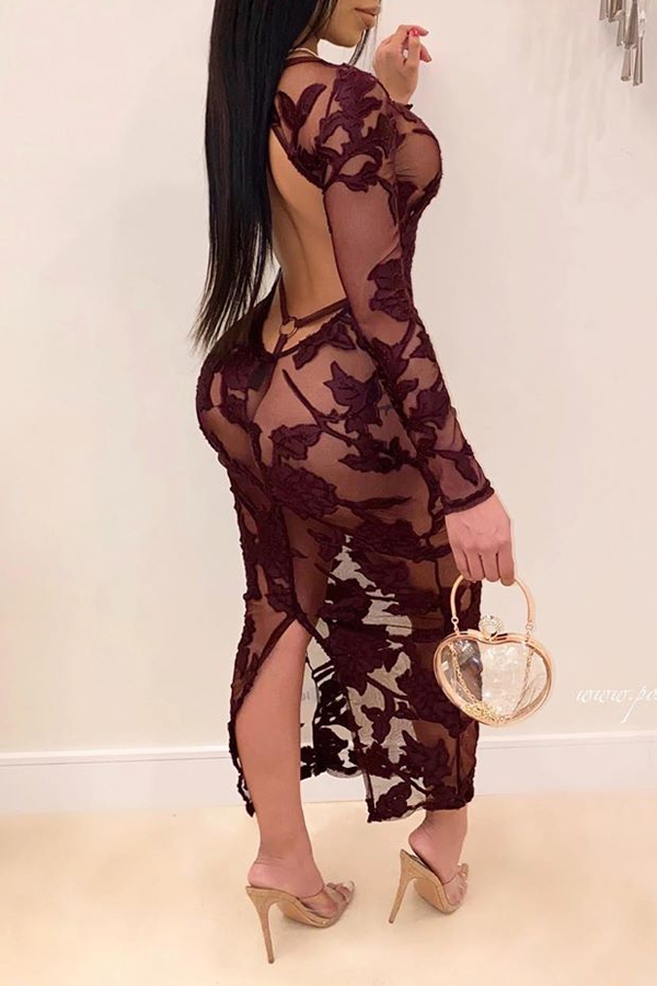 Lovely Sexy See-through Wine Red Ankle Length Dress
