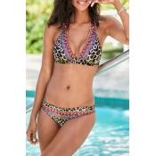 Lovely Leopard Two-piece Swimsuit