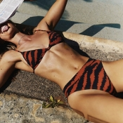 Lovely High-Leg Tiger Stripes Two-piece Swimsuit