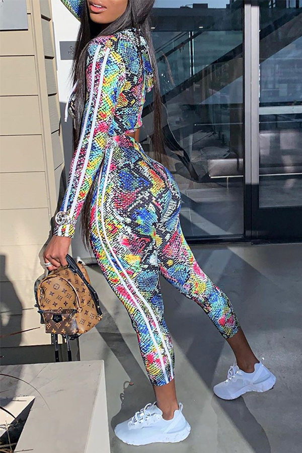 Lovely Chic Print Skinny Multicolor Two-piece Pants Set