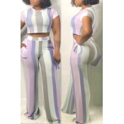 Lovely Casual Striped Purple Two-piece Pants Set
