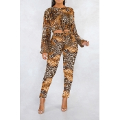 Lovely Casual Print Coffee Two-piece Pants Set
