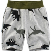 Lovely Trendy Print Grey Boy Shorts