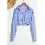 Lovely Trendy Striped Blue Blouse