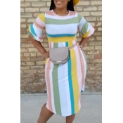 Lovely Sweet Striped Multicolor Knee Length Dress