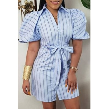Lovely Casual Striped Blue Mini Dress