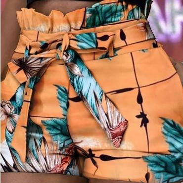 Lovely Trendy Print Orange Shorts