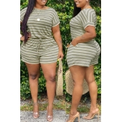 lovely Casual Striped Green Plus Size Two-piece Sh