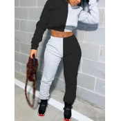 Lovely Casual Patchwork Black Two Piece Pants Set