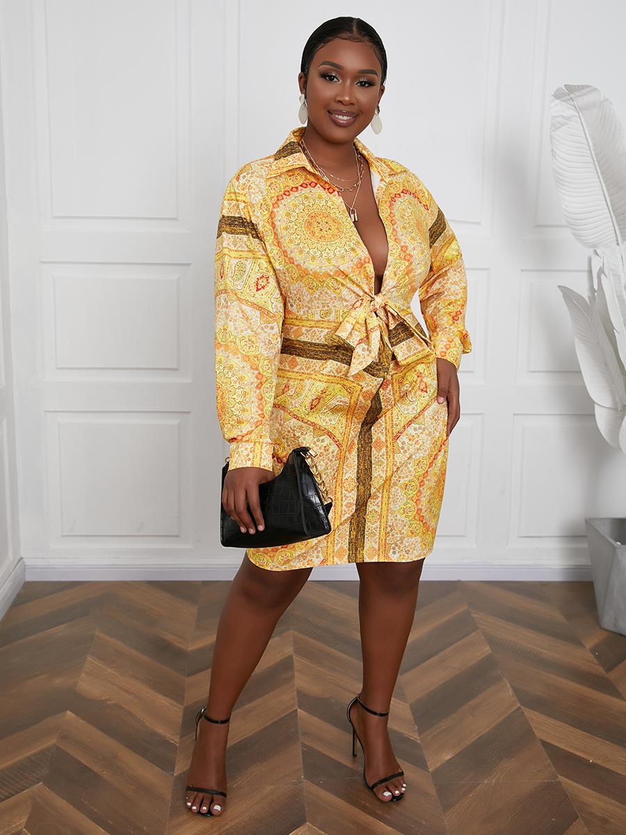 Lovely Plus Size Turndown Collar Geometric Print Shirt Dress